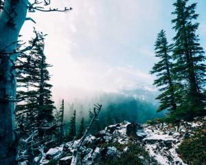 nieve en cercedilla, la sierra de madrid